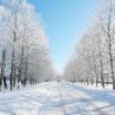 Музыкальная подборка: Лучшие зимние треки